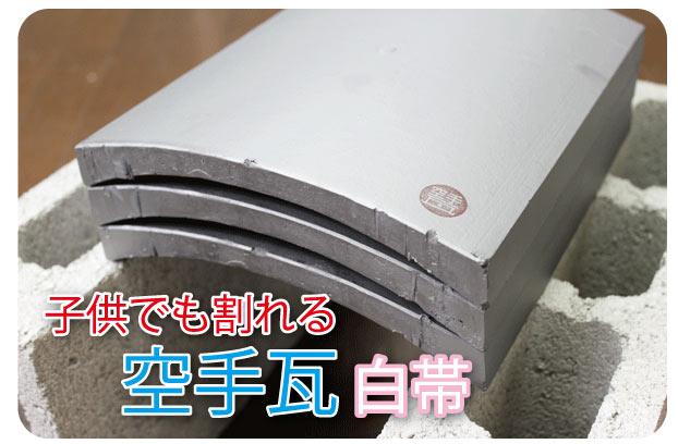 otameshishiro2